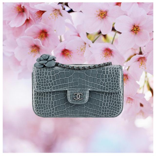 Chanel 2.55 bag in alligator