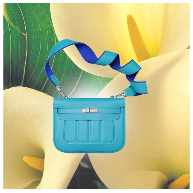 Hermès bag
